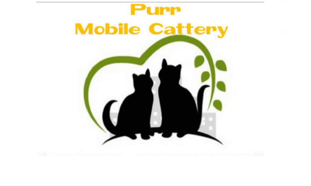 Purr Mobile Cattery Blackpool